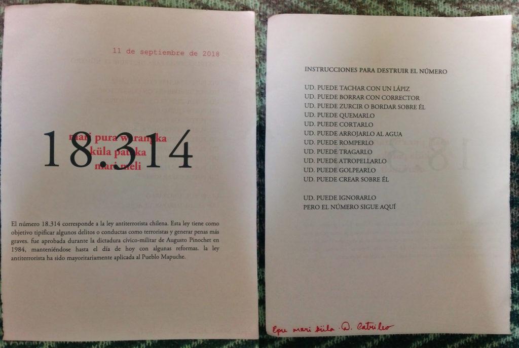 periferias-intervencao-mapuche-obra-18-314-mari-pura-warangka-kula-pataka-mari-meli-1nage15e16-1800×1207
