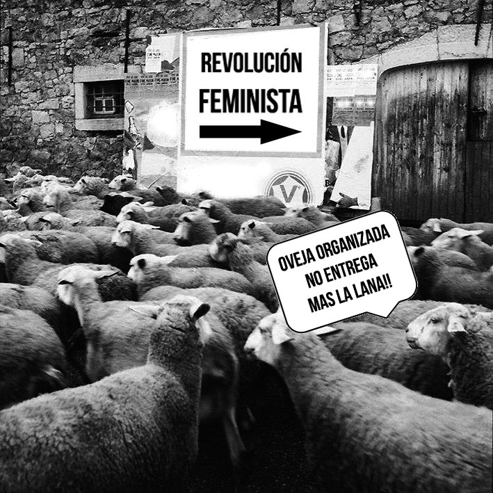 feminismoantiespecista